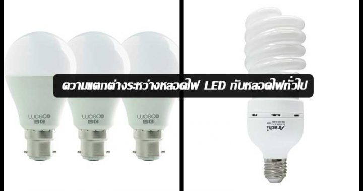 LED-bulbs-and-general-light-bulbs-news-site